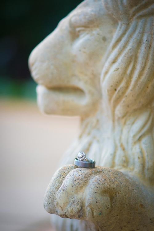 Dennis Felber Photography-Boerner Botanical Gardens-05