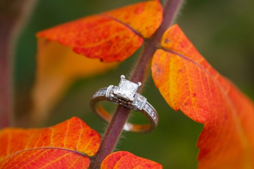 Dennis Felber Photography-Estabrook Park Engagement-08