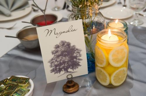 dennis-felber-photography-meadowbrook-wedding-031