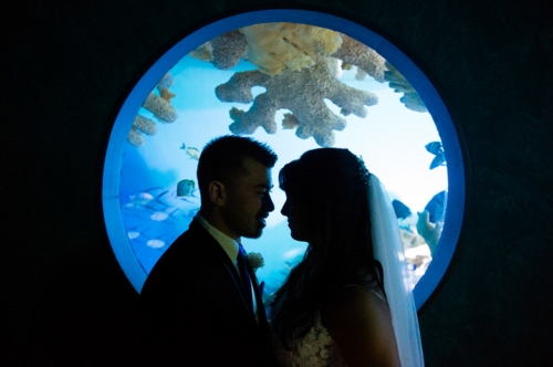 Dennis Felber Photography-Milwaukee Public Museum Wedding-19
